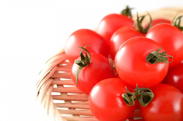 トマト 犬 ミニ うちの犬のトマトの食べ方がおかしい