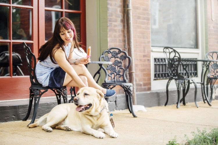 カフェ ドッグ 福岡県遠賀郡にあるドッグカフェ【Dogcafe BeBe(ドッグカフェ
